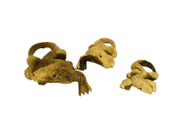 Carved Komodo Dragon - Various Sizes