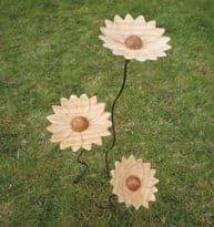 Sunflower - Set of 3