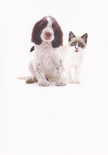 Dog and Cat Greetings Card