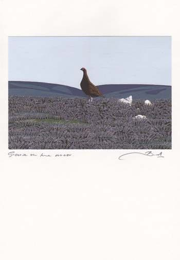Grouse on the Moor Greetings Card