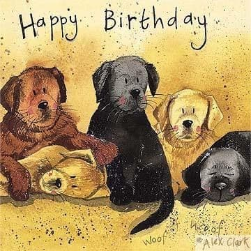 Litter of Labs Birthday Card