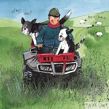 One Man and his Dogs Greetings Card