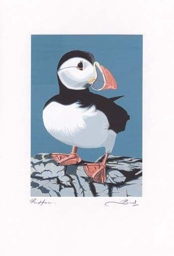 Puffin Greetings Card