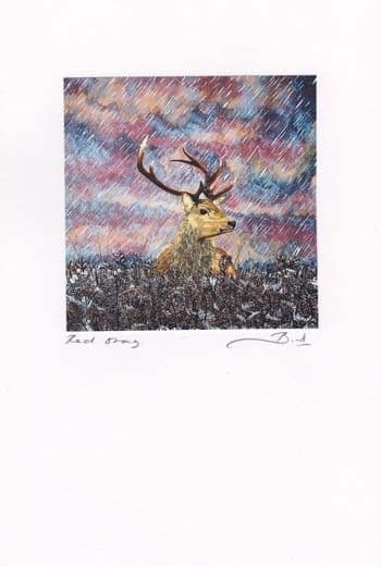 Red Stag Greetings Card