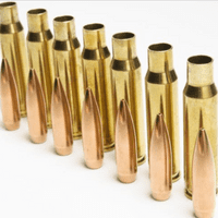 Brass Rifle Cases
