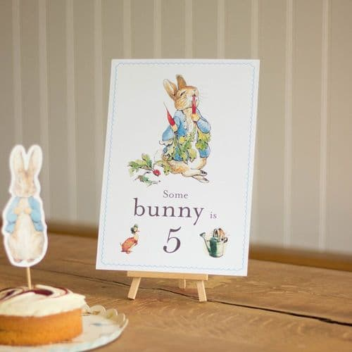 Peter Rabbit 'Some Bunny is 5' Card and Easel Party Sign Decoration