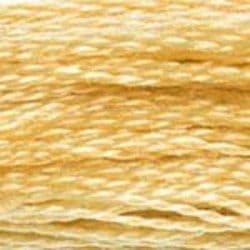 DMC Shade 676 Stranded Cotton Thread
