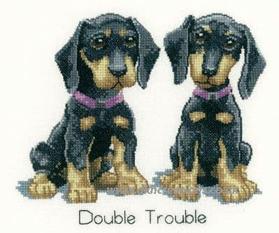 Double Trouble Cross Stitch Kit