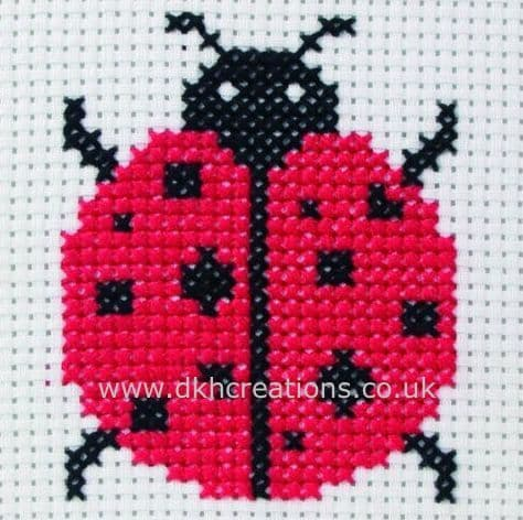 Ladybird 1st Kit Cross Stitch Kit