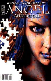 Angel After The Fall #13 Cover A (2008) IDW Publishing comic book