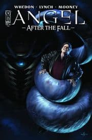 Angel After The Fall #14 Cover A (2008) IDW Publishing comic book