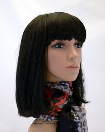 Wigs and Accessories
