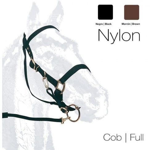 Halter-bridle with rubber reins