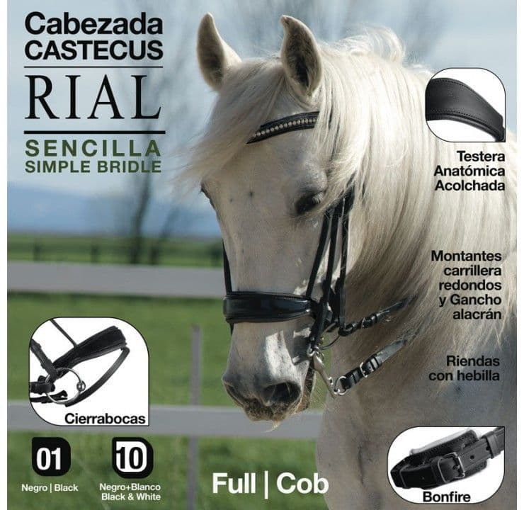 Rial  single bridle